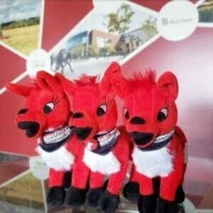 branded stuffed animals for business 6